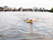 CharlesRiverSwim_2018-052