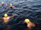 CharlesRiverSwim_2018-079
